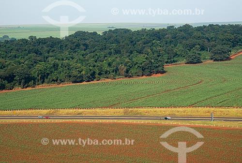 Assunto: Trecho do Anel Viário Sul (SP-333) próximo ao Morro da Conquista / Local: Ribeirão Preto - São Paulo (SP) - Brasil / Data: 05/2013