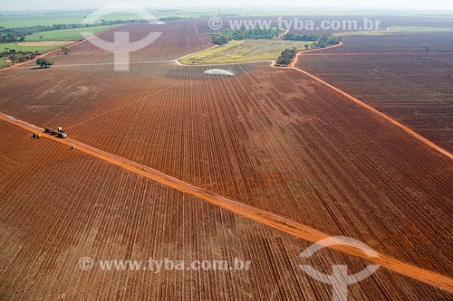 Assunto: Vista aérea de irrigação em plantação de cana-de-açúcar / Local: Guaíra - São Paulo (SP) - Brasil / Data: 05/2013