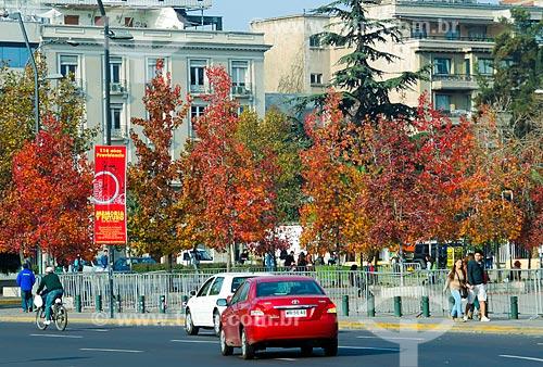 Assunto: Árvores com característica de outono na Plaza Italia (Praça Itália) / Local: Santiago - Chile - América do Sul / Data: 05/2013