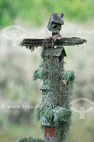 Assunto: Casinhas de passarinho coberta por musgos / Local: Campos de Cima da Serra - Rio Grande do Sul (RS) - Brasil / Data: 09/2013