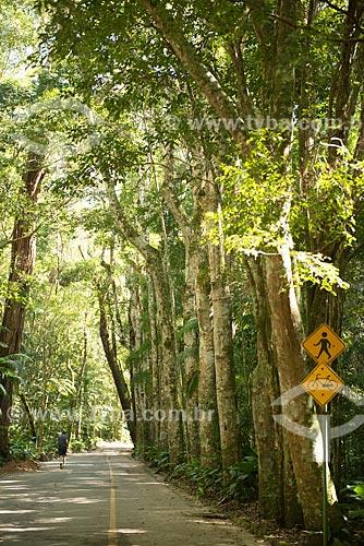 Assunto: Trilha na Floresta da Tijuca / Local: Rio de Janeiro (RJ) - Brasil / Data: 08/2013
