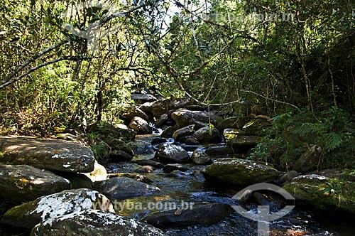 Assunto: Rio Aiuruoca próximo à Cachoeira das Fadas / Local: Aiuruoca - Minas Gerais (MG) - Brasil / Data: 07/2013