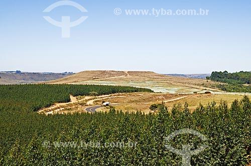Assunto: Vista de plantação de eucalípto e área de mineração de fosfato a partir da estrada entre de Araxá para Tapira / Local: Araxá - Minas Gerais (MG) - Brasil / Data: 07/2013