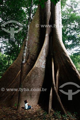 Assunto: Criança observa arvore Samaúma (Ceiba pentandra) localizada na beira do Rio Ariaú / Local: Amazonas (AM) - Brasil / Data: 09/2013