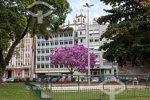 Assunto: Ipê-Rosa (Tabebuia heptaphylla) florido na Praça Luís de Camões com a Igreja de Nossa Senhora da Glória do Outeiro (1739) ao fundo / Local: Glória - Rio de Janeiro (RJ) - Brasil / Data: 08/2013
