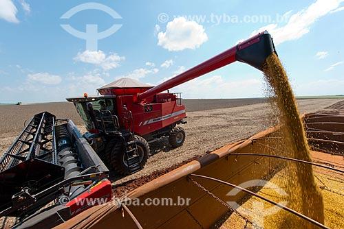 Assunto: Descarga de soja na zona rural de Palotina / Local: Palotina - Paraná (PR) - Brasil / Data: 01/2013