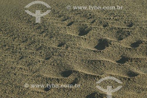 Assunto: Pegadas na areia / Local: Punta Del Este - Departamento de Maldonado - Uruguai - América do Sul / Data: 09/2013