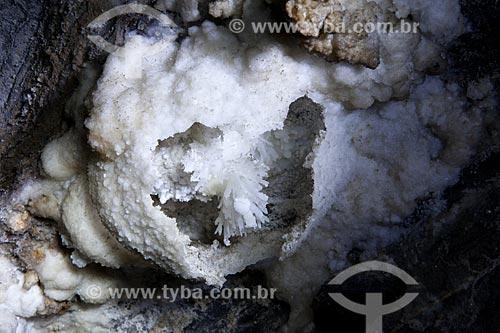 Assunto: Rara formação de flor de aragonita na Caverna da Torrinha / Local: Iraquara - Bahia (BA) - Brasil / Data: 09/2012