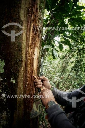 Assunto: Ensino para imersão na floresta primária - Nilson Mendes, primo de Chico Mendes - Seringal Cachoeira / Local: Xapuri - Acre (AC) - Brasil / Data: 05/2013