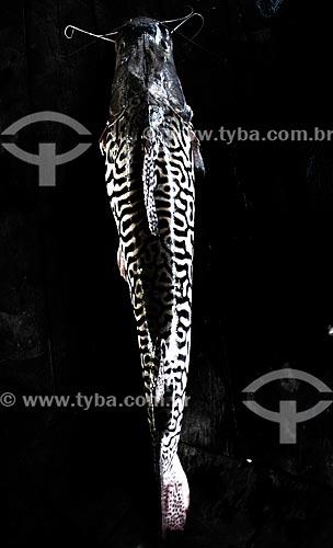 Assunto: Surubim - caça do índio Yawanawá / Local: Acre (AC) - Brasil / Data: 05/2013