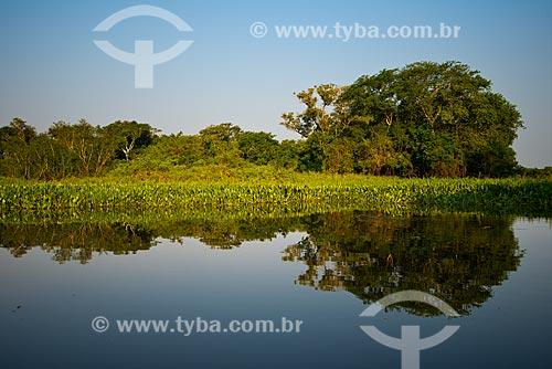 Assunto: Corixo próximo ao Rio Cuiabá - corixos são canais que ligam as águas de baías, lagoas, alagados com os rios próximos / Local: Mato Grosso do Sul (MS) - Brasil / Data: 10/2012