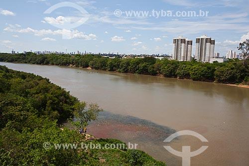 Assunto: Cardume de peixe Curimbatá (Prochilodus lineatus) no Rio Cuiabá com a cidade ao fundo / Local: Cuiabá - Mato Grosso (MT) - Brasil / Data: 10/2013