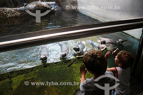 Assunto: Crianças observando pinguins no Aquário Municipal de Santos / Local: Santos - São Paulo (SP) - Brasil / Data: 12/2013