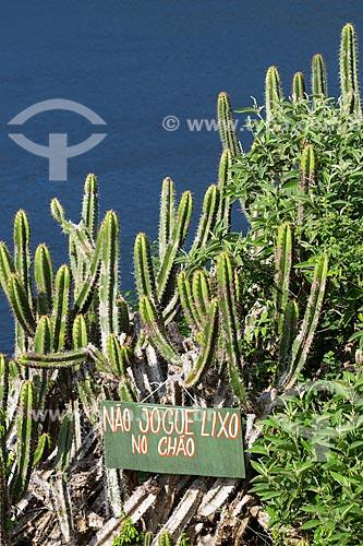 Assunto: Cacto Pilosocereus ulei - cacto característico da Caatinga Fluminense também conhecida como estepe arbórea aberta - próximo à placa no Morro do Forno / Local: Arraial do Cabo - Rio de Janeiro (RJ) - Brasil / Data: 01/2014