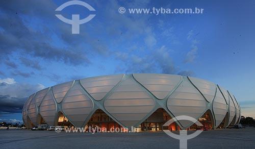 Assunto: Fachada da Arena da Amazônia Vivaldo Lima (2014) / Local: Manaus - Amazonas (AM) - Brasil / Data: 03/2014