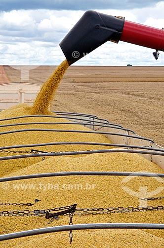 Assunto: Descarga de soja em caminhão graneleiro / Local: Chapadão do Sul - Mato Grosso do Sul (MS) - Brasil / Data: 02/2014
