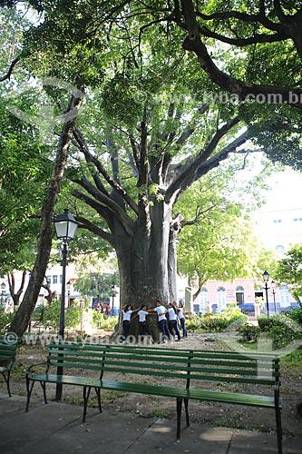 Assunto: Estudantes abraçando Baobá plantado por Senador Pompeu em 1910 na Praça dos Mártires (Passeio Público) / Local: Fortaleza - Ceará (CE) - Brasil / Data: 03/2014