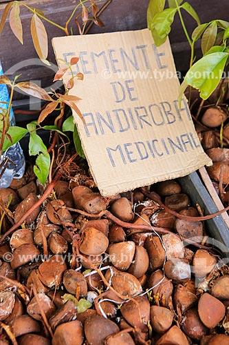 Assunto: Sementes da Amazônia - Andiroba (Carapa Guianensis) / Local: Belém - Pará (PA) - Brasil / Data: 03/2014