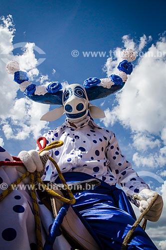 Assunto: Mascarado durante a Festa do Divino / Local: Pirenópolis - Goiás (GO) - Brasil / Data: 05/2013
