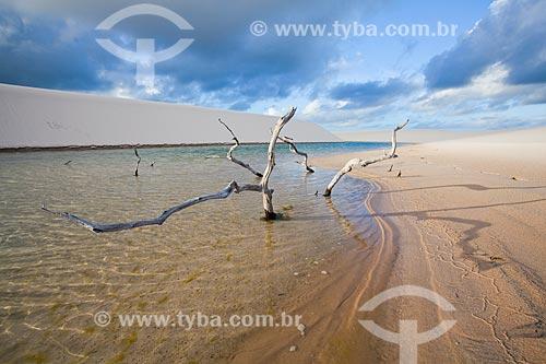 Assunto: Parque Nacional dos Lençóis Maranhenses / Local: Barreirinhas - Maranhão (MA) - Brasil / Data: 06/2013