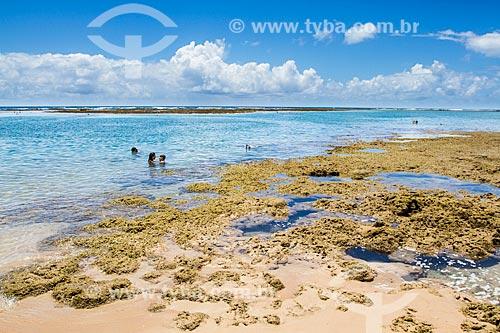 Assunto: Praia de Taipús de Fora, na Península de Maraú / Local: Maraú - Bahia (BA) - Brasil / Data: 02/2014