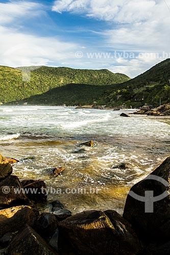 Assunto: Praia do Matadeiro vista da Praia da Armação / Local: Florianópolis - Santa Catarina (SC) - Brasil / Data: 04/2014