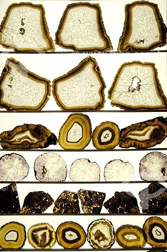 Assunto: Exposição Memórias da Terra: Coleção de Minerais do Museu da Geodiversidade (MGeo), localizado na Universidade Federal do Rio de Janeiro (UFRJ) - Ilha do Fundão / Local: Rio de Janeiro (RJ) - Brasil / Data: 10/2011