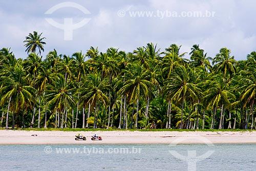 Assunto: Bugres em passeio turístico na Praia Ponta de Mangue / Local: Maragogi - Alagoas (AL) - Brasil / Data: 12/2013