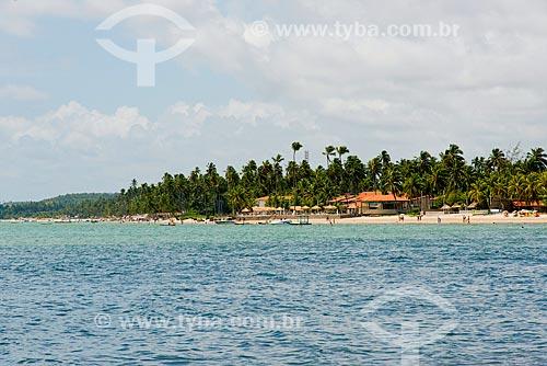 Assunto: Coqueiros na Praia de Peroba / Local: Maragogi - Alagoas (AL) - Brasil / Data: 12/2013
