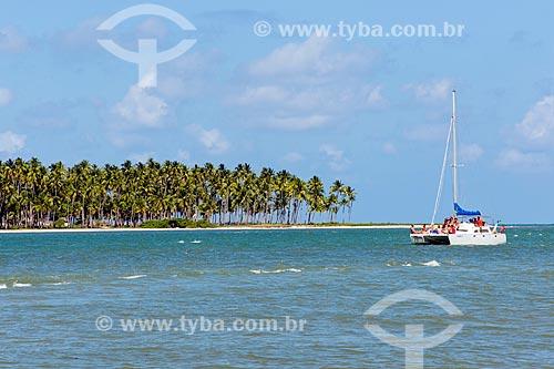 Assunto: Coqueiros na Praia de Guadalupe / Local: Sirinhaém - Pernambuco (PE) - Brasil / Data: 12/2013