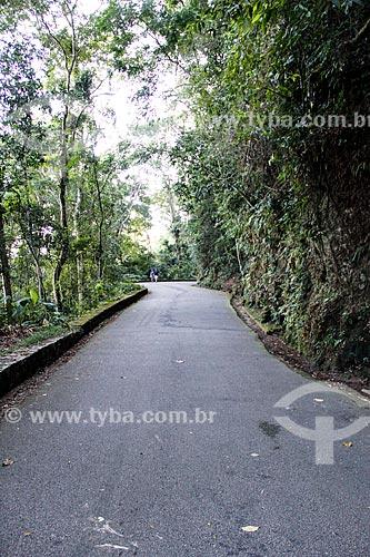 Assunto: Estrada das Paineiras / Local: Rio de Janeiro (RJ) - Brasil / Data: 08/2014