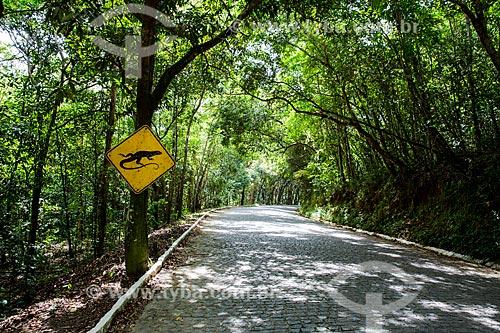 Placa de travessia de lagartos na Rodovia PE-076  - São José da Coroa Grande - Pernambuco (PE) - Brasil