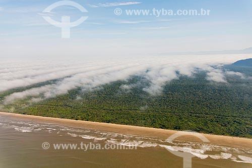 Praia Juréia - Estação Ecológica de Juréia-Itatins  - Iguape - São Paulo (SP) - Brasil