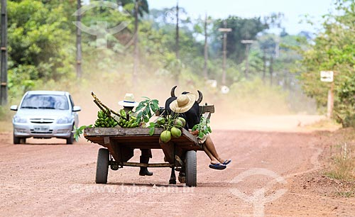 Agricultores no Km 25 da Estada BR-174  - Manaus - Amazonas (AM) - Brasil