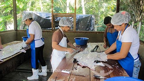Beneficiamento do couro do Jacaré-açu (Melanosuchus niger) na Reserva Extrativista do Lago Cuniã  - Porto Velho - Rondônia (RO) - Brasil