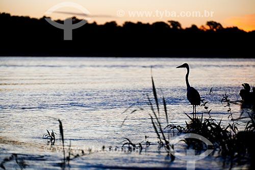 Pôr do sol às margens do Rio Guaporé  - São Francisco do Guaporé - Rondônia (RO) - Brasil