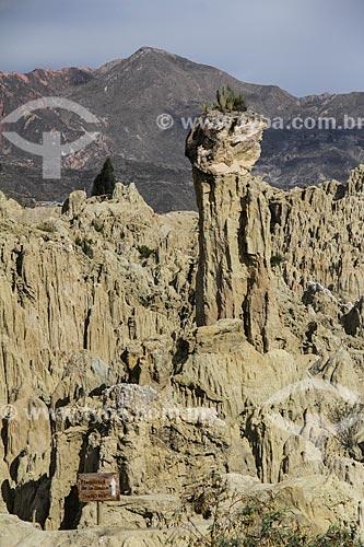 Formação geológica conhecida como Sombrero de la Dama (Chapéu de Senhora) no Valle de la Luna (Vale da Lua)  - La Paz - Departamento de La Paz - Bolívia