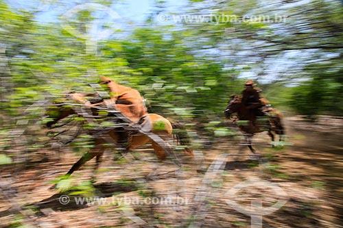 Vaqueiros no sertão de Pernambuco  - Serrita - Pernambuco (PE) - Brasil