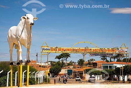 Estátua de um boi com o pórtico da cidade de Cedro ao fundo - Rodovia PE-475  - Cedro - Pernambuco (PE) - Brasil