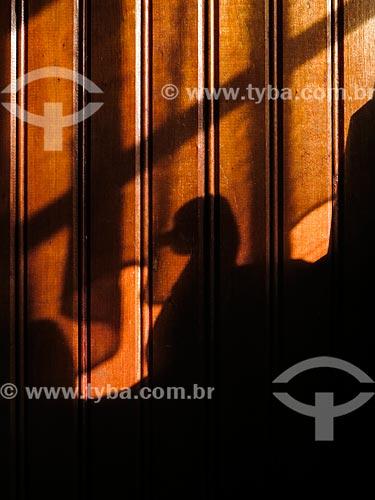Sombra pato na parede  - Canela - Rio Grande do Sul (RS) - Brasil