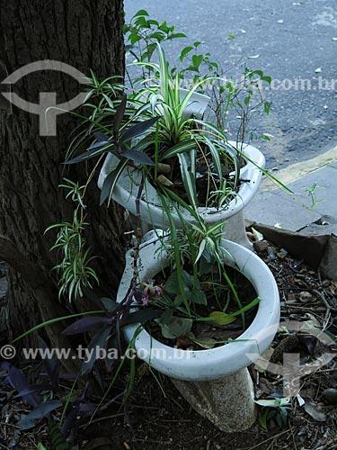 Vaso sanitário usado como vaso de plantas  - Porto Alegre - Rio Grande do Sul (RS) - Brasil