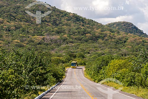 Ônibus na Rodovia PE-390  - Serra Talhada - Pernambuco (PE) - Brasil