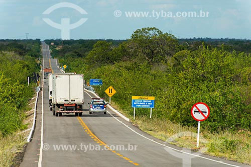 Ultrapassagem proibida na Rodovia PE-360  - Floresta - Pernambuco (PE) - Brasil