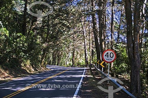 Trecho da Rodovia BR-354 entre Resende (RJ) e Itamonte (MG)  - Itamonte - Minas Gerais (MG) - Brasil