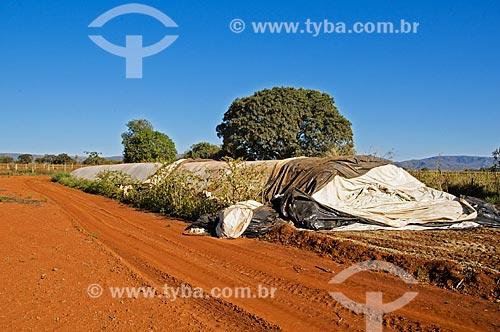 Silo bolsa com insumos agrícolas  - Pimenta - Minas Gerais (MG) - Brasil