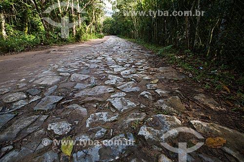 Estrada do Comércio construída no século XIX -Reserva Biológica do Tinguá  - Nova Iguaçu - Rio de Janeiro (RJ) - Brasil