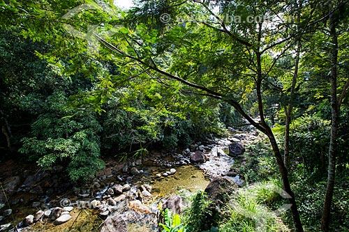 Rio Tinguá - Reserva Biológica de Tinguá  - Nova Iguaçu - Rio de Janeiro (RJ) - Brasil