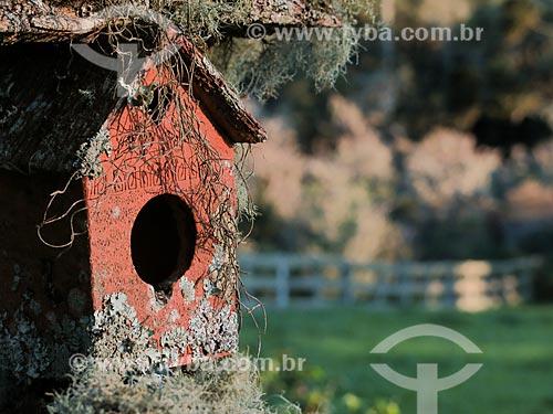 Casa de passarinho coberta por musgo  - São Francisco de Paula - Rio Grande do Sul (RS) - Brasil