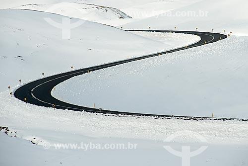Ring road - principal estrada da Islândia - na região do Lago Mývatn   - Northeastern Region - Islândia