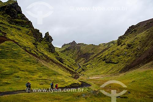 Trekking na região da vila Vík í Mýrdal  - Southern Region - Islândia